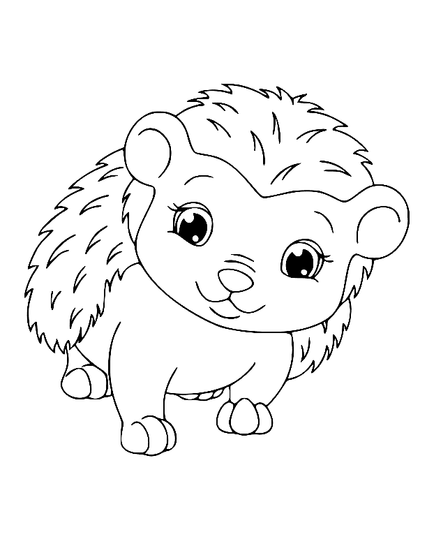 Adorable Hedgehog Coloring Pages