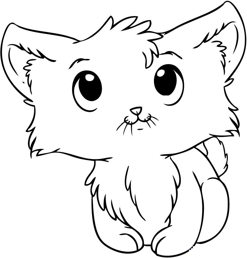 - Cat Coloring Pages – Coloring.rocks!