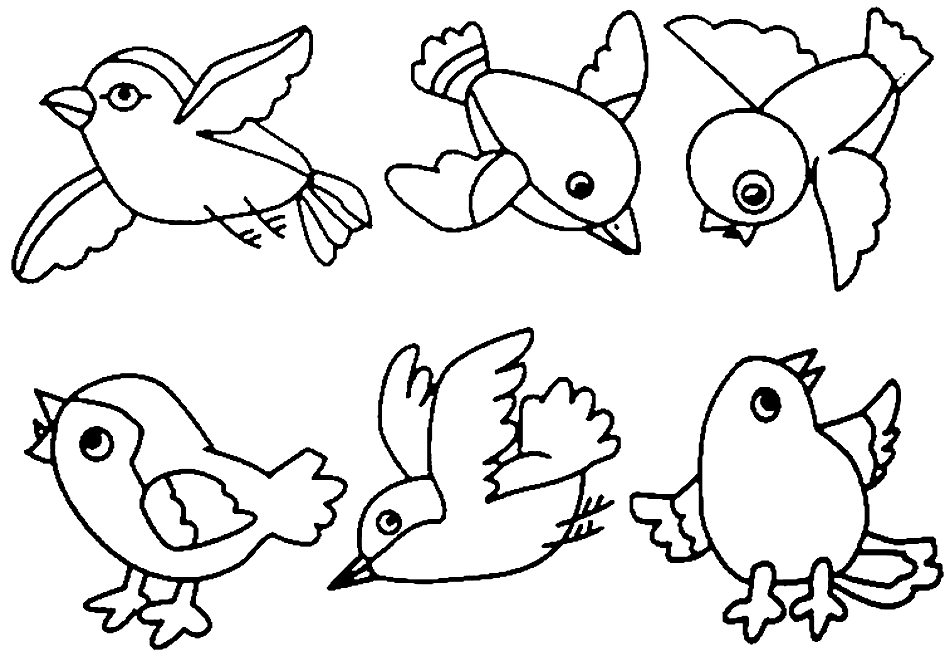 Adorable Robins Coloring Page And Craft Shapes