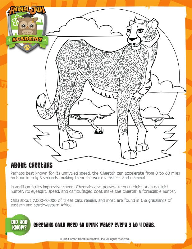 Animal Jam Academy Hyena Sheet