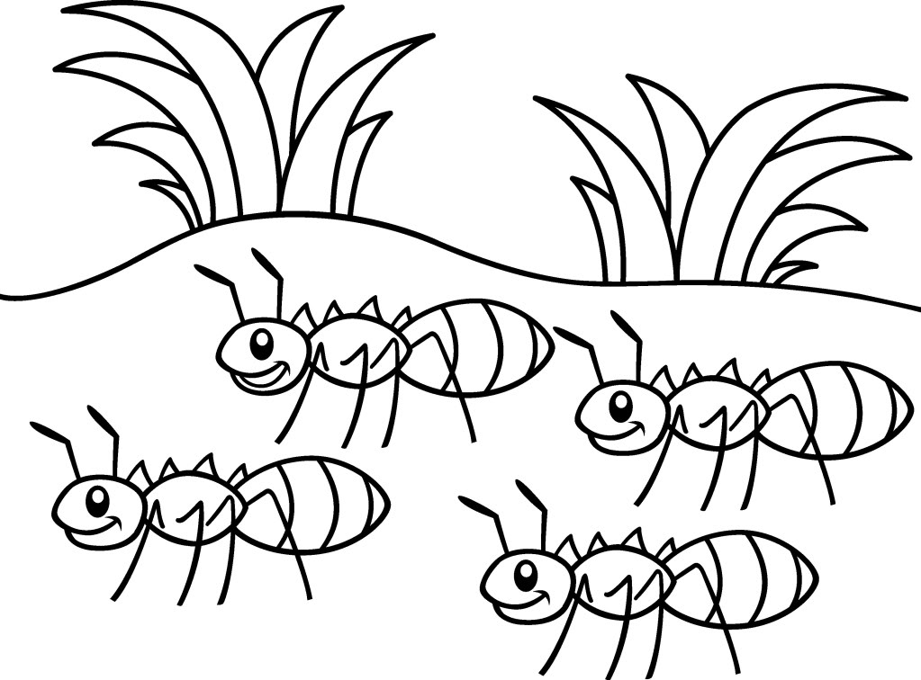 Ants Coloring Page for Preschoolers