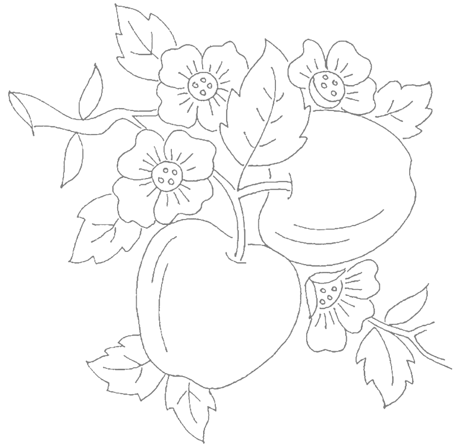 Apples and Blossoms Tracing Coloring Page