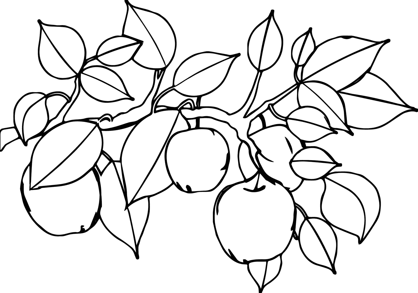 Apples on a Tree Coloring Page