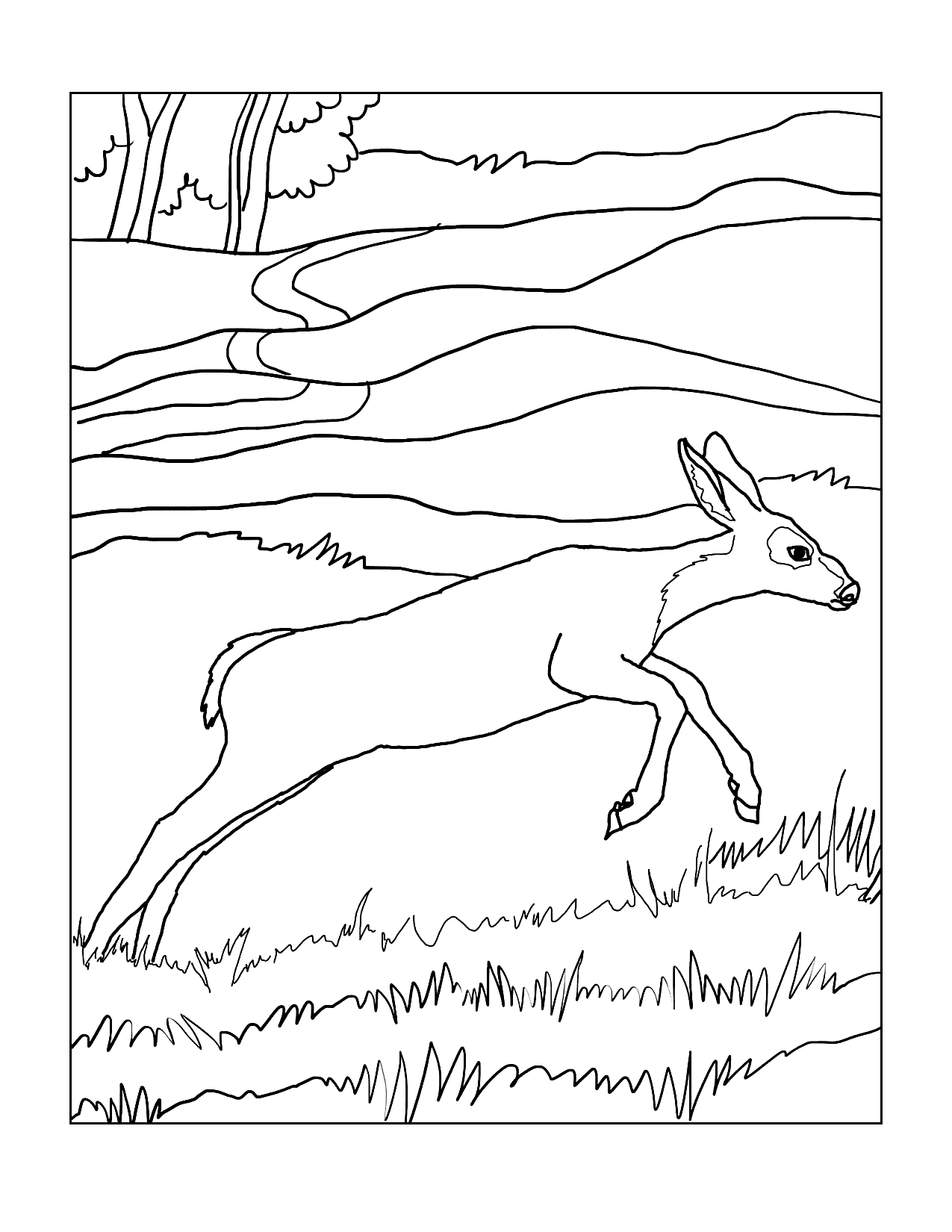 Baby Deer Jumping In Woods Coloring Page