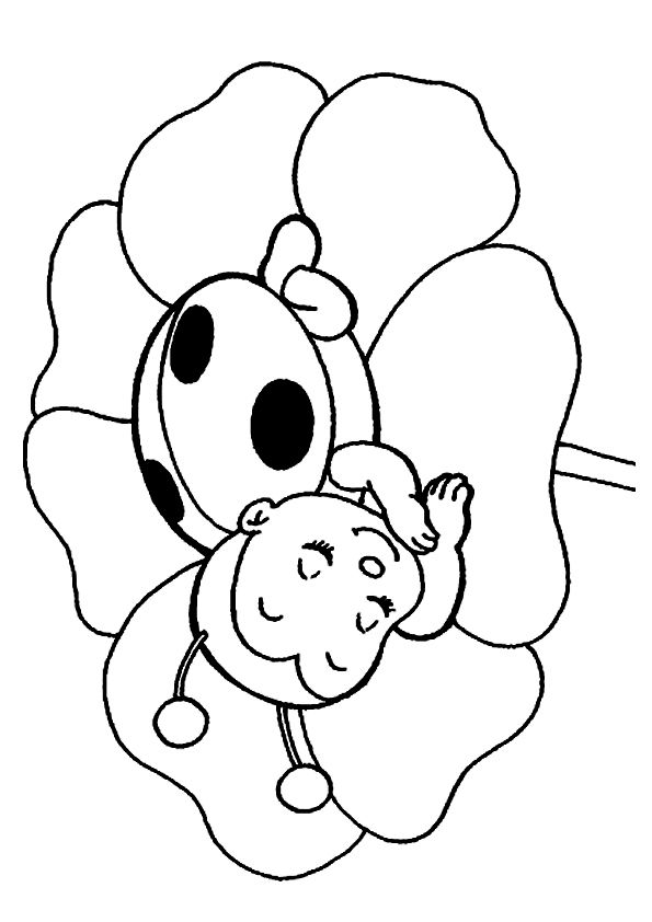 Baby Ladybug Coloring Page