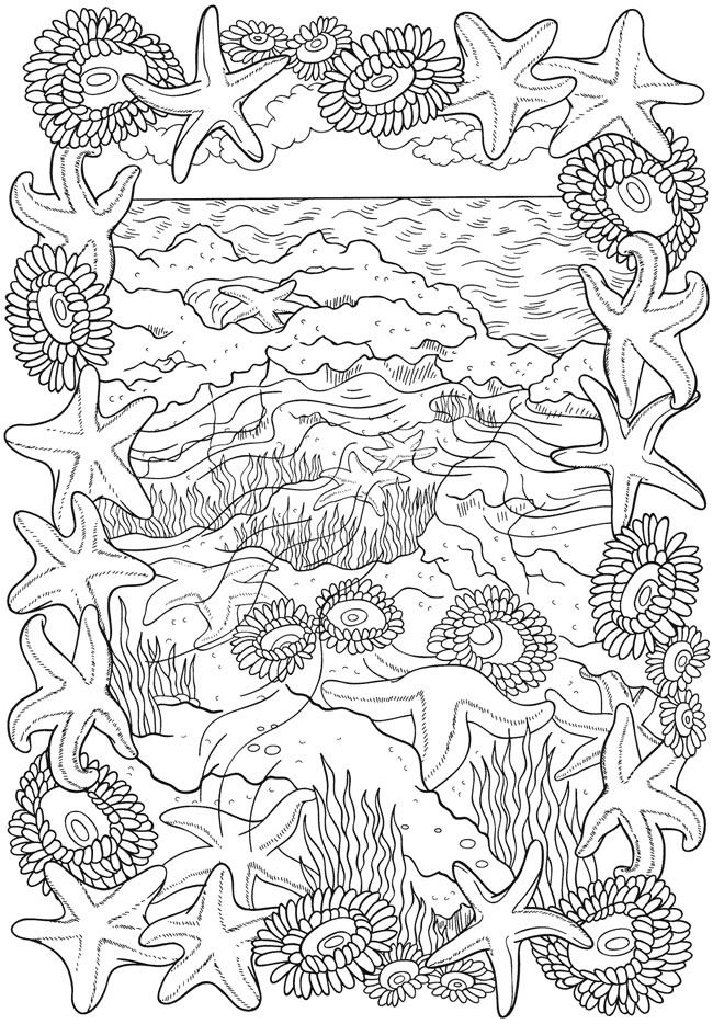 Beach Theme Coloring Page for Adults