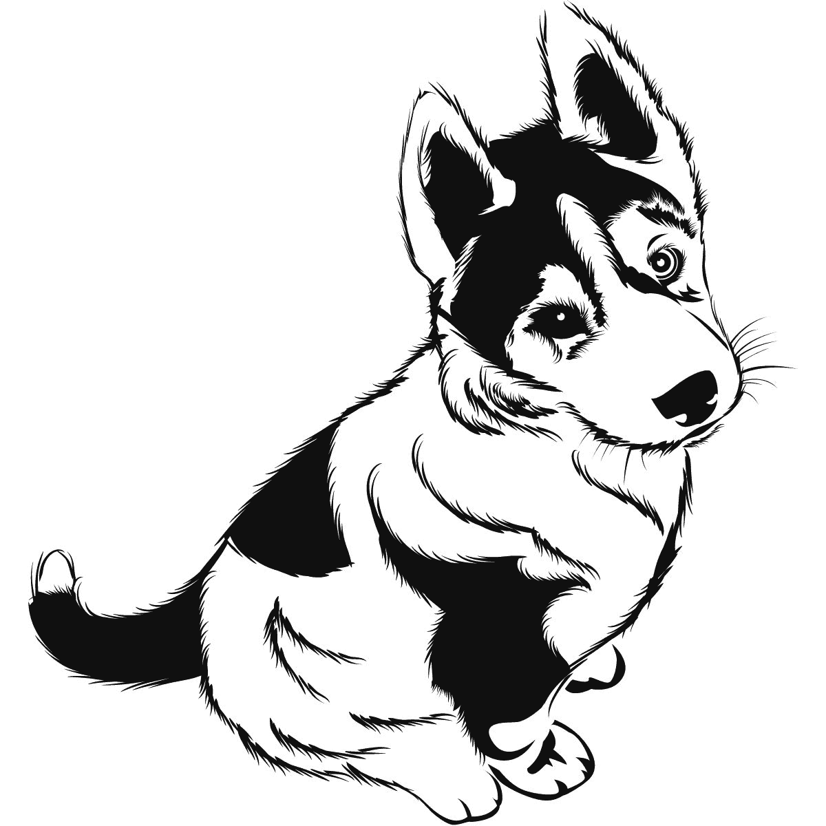 Cute Puppy Coloring Page Coloring Rocks