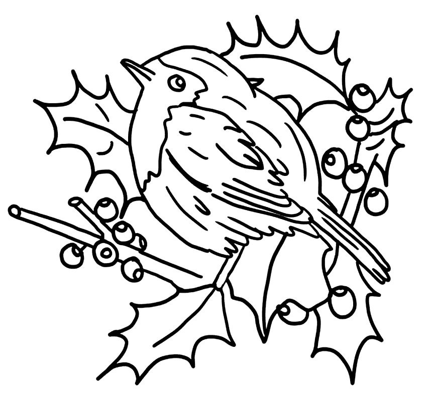 Christmas Robin On Holly Coloring Page