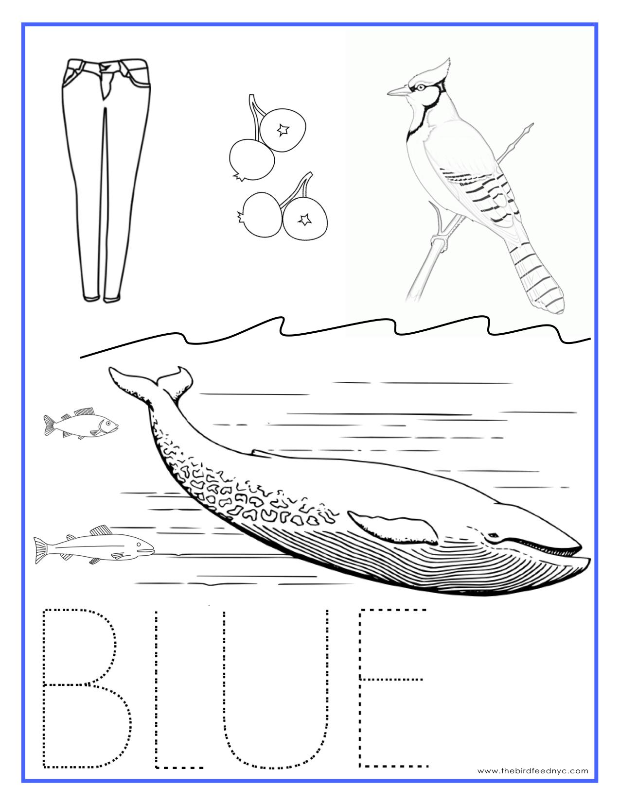 Color Blue Kindergarten Coloring Pages