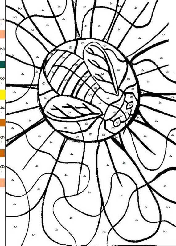 Color By Numbers - Bee