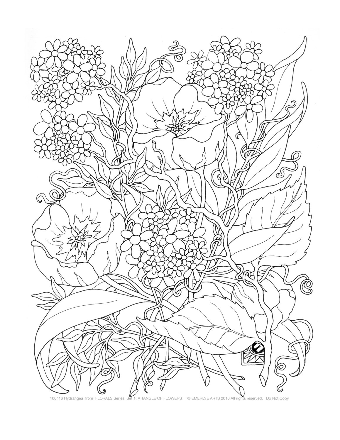 Complex Flower Coloring Pages for Adults