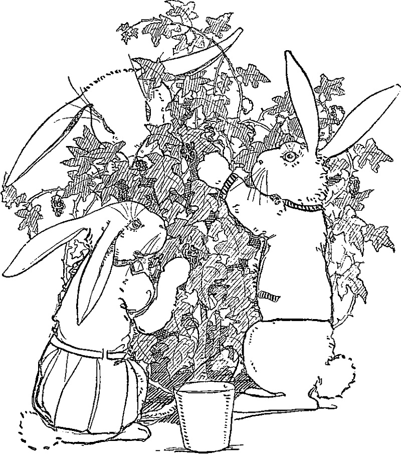 Complex Peter Rabbit Coloring Pages