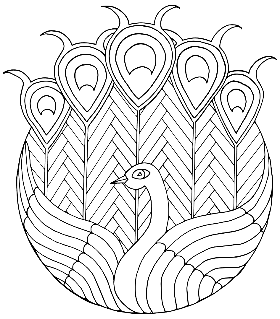 Cool Peacock Design Coloring Page
