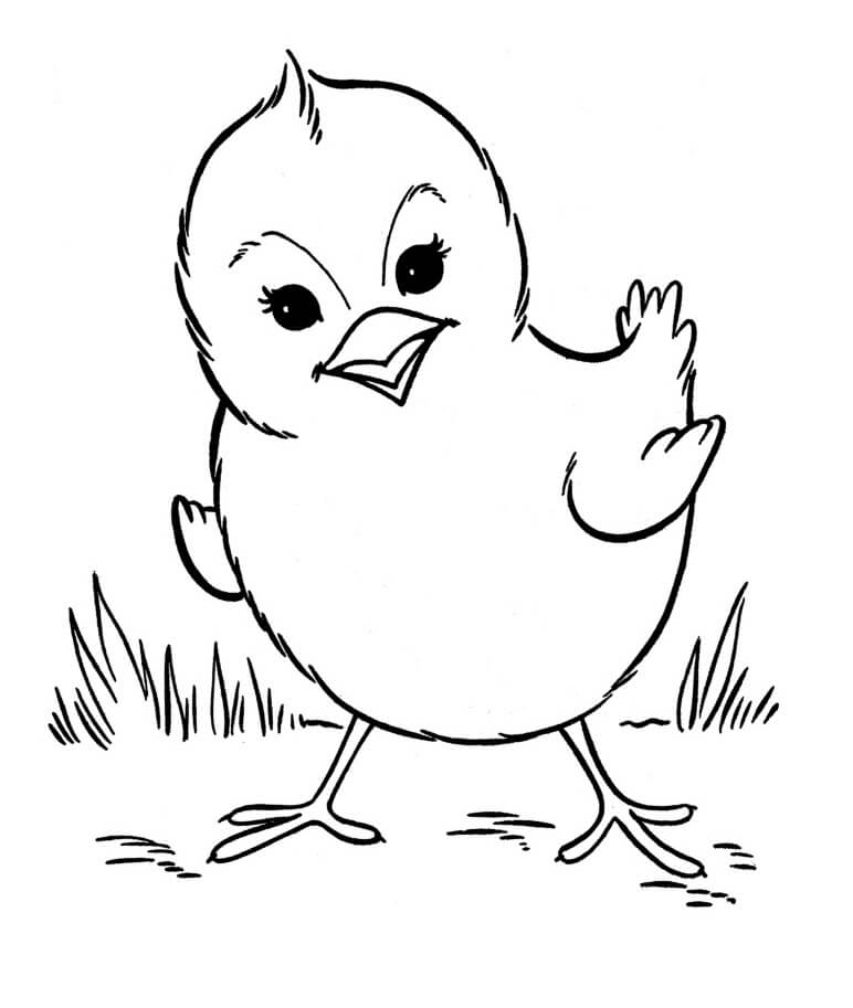 Farm Animal Coloring Pages Coloring Rocks