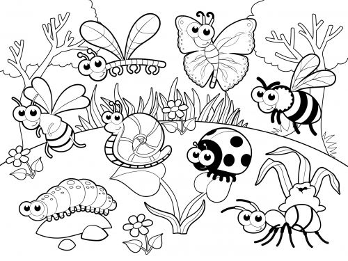 Cute Garden Insects Coloring Pages