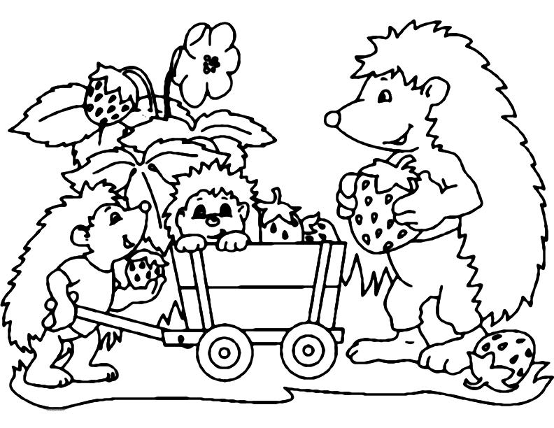 Cute Hedgehogs Gathering Strawberries