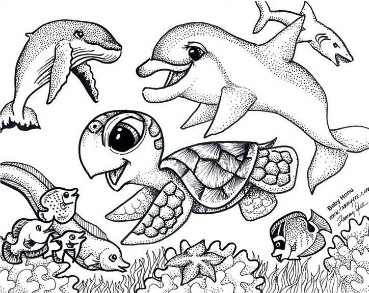 Sea Turtle coloring page | Free Printable Coloring Pages | 576x724
