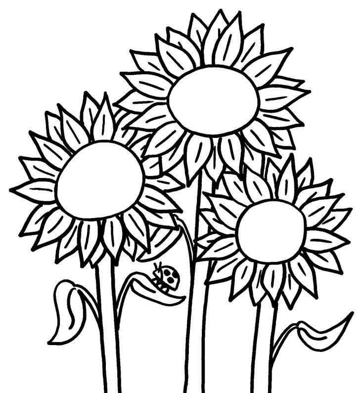 Cute Sunflowers Coloring Page for Preschoolers