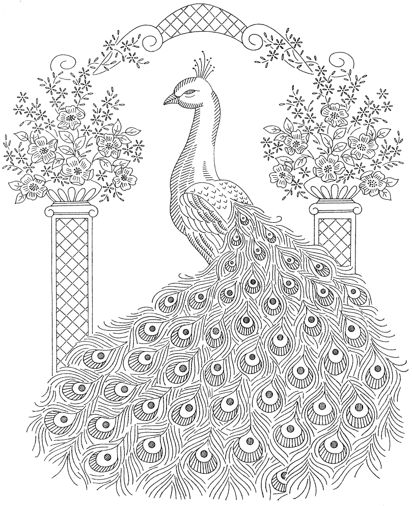 Detailed Peacock Coloring Page