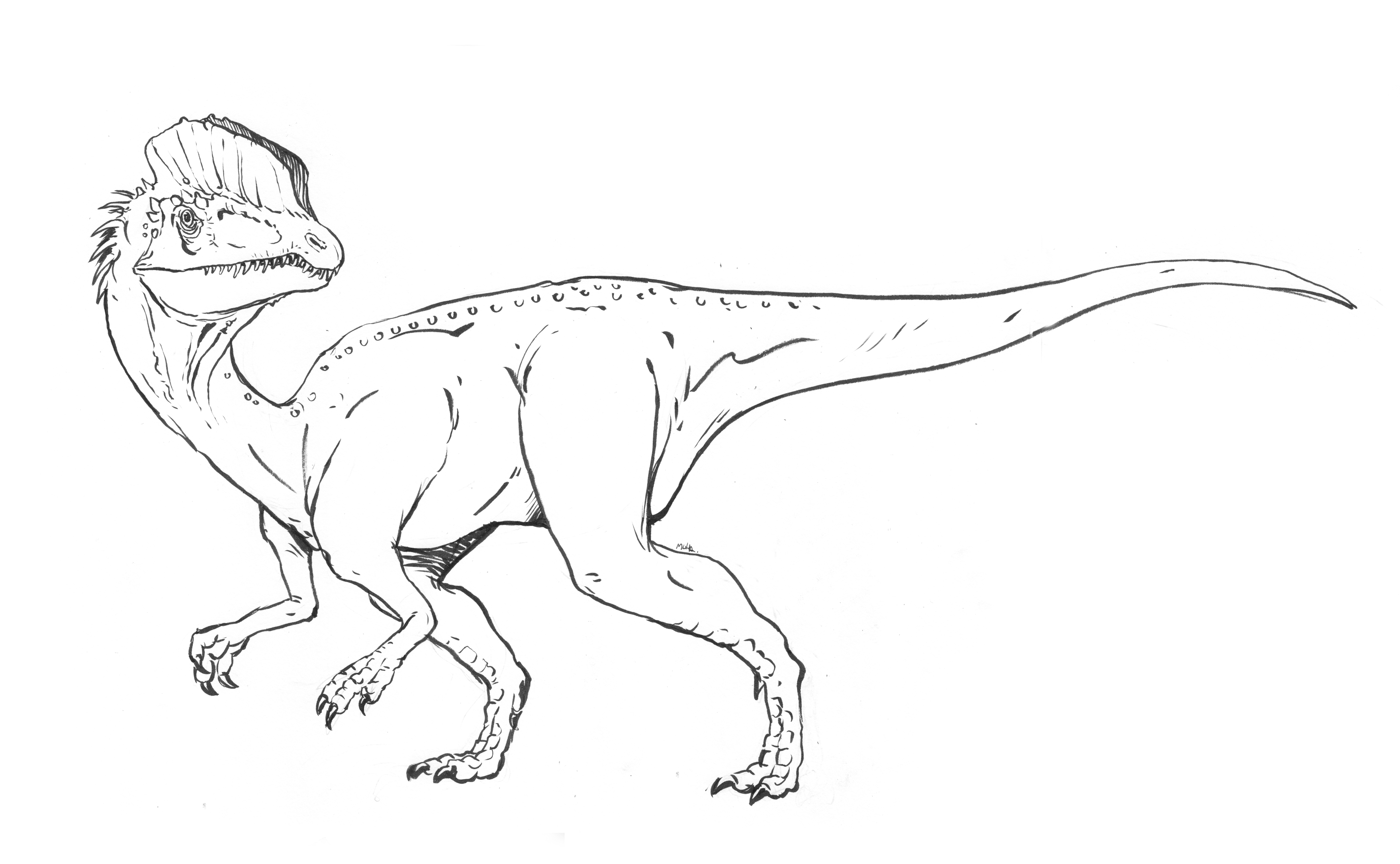 Dinosaur Coloring Pages Coloring Rocks