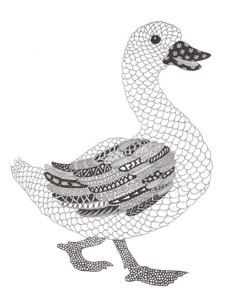 Duck Pattern Coloring Page for Adults