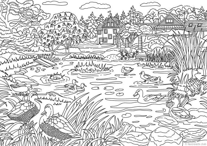 Duck Pond Coloring Page for Adults