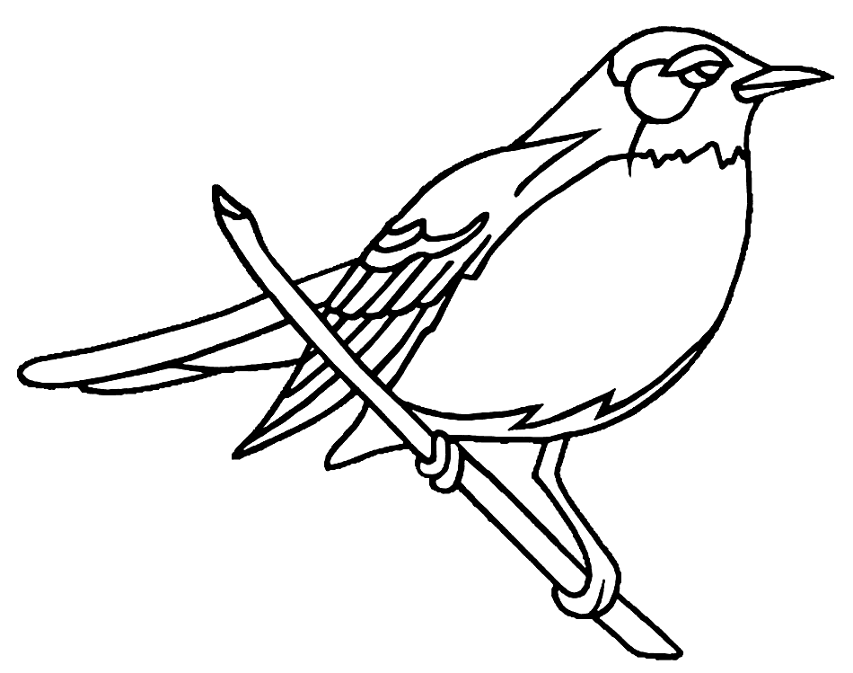 Easy Robin Coloring Pages