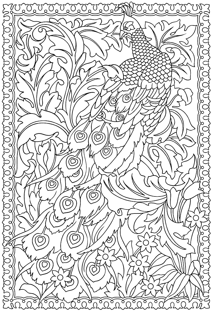 Fancy Peacock Coloring for Adults