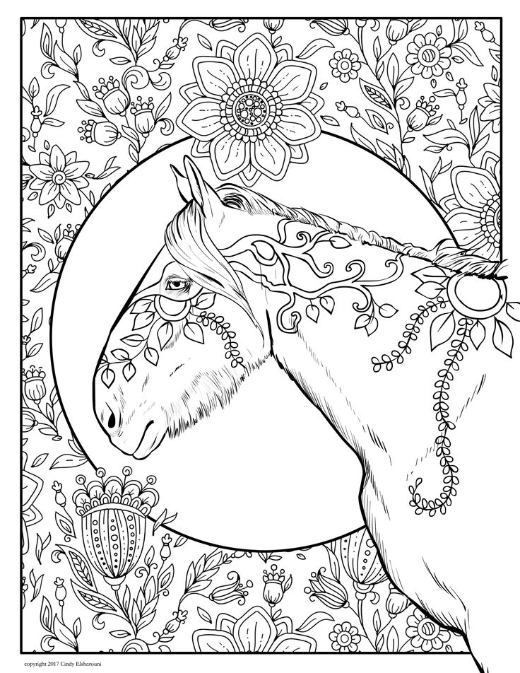 - Horse Coloring Pages – Coloring.rocks!