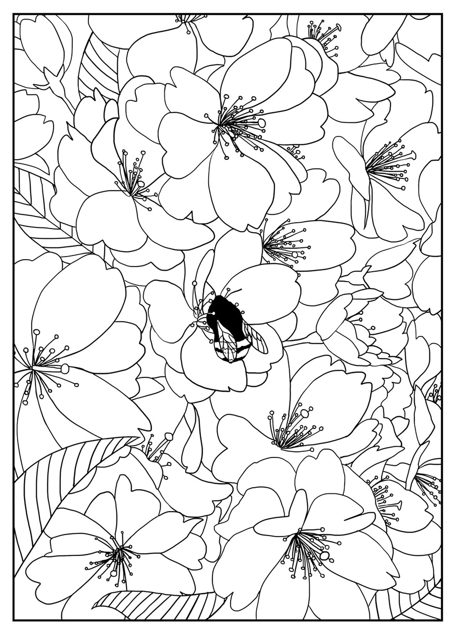 Flower Printable Coloring Pages for Adults