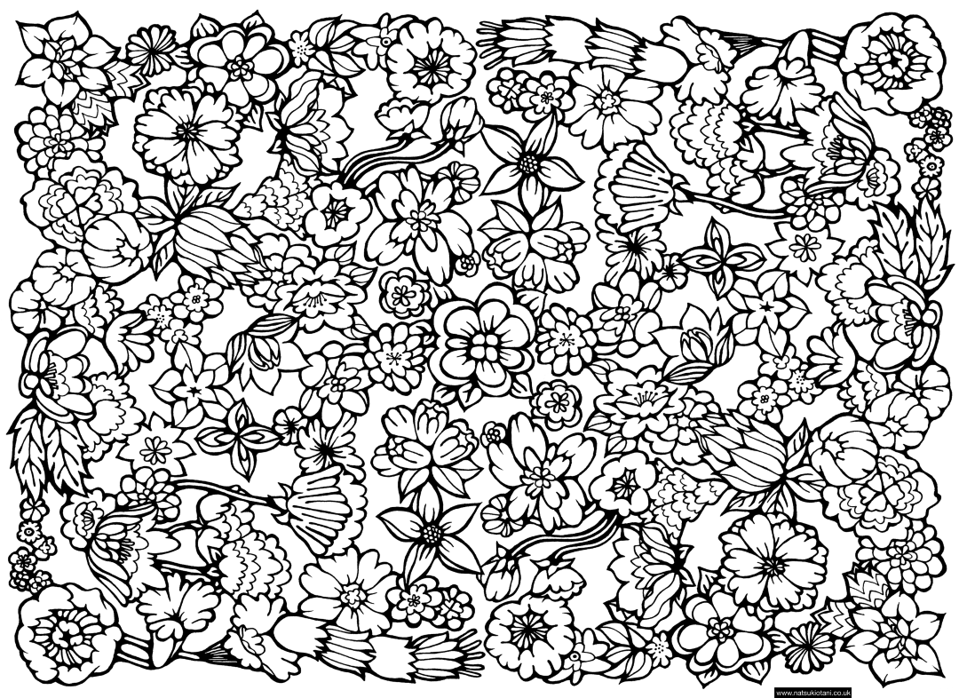 Flowers Pattern Adult Coloring