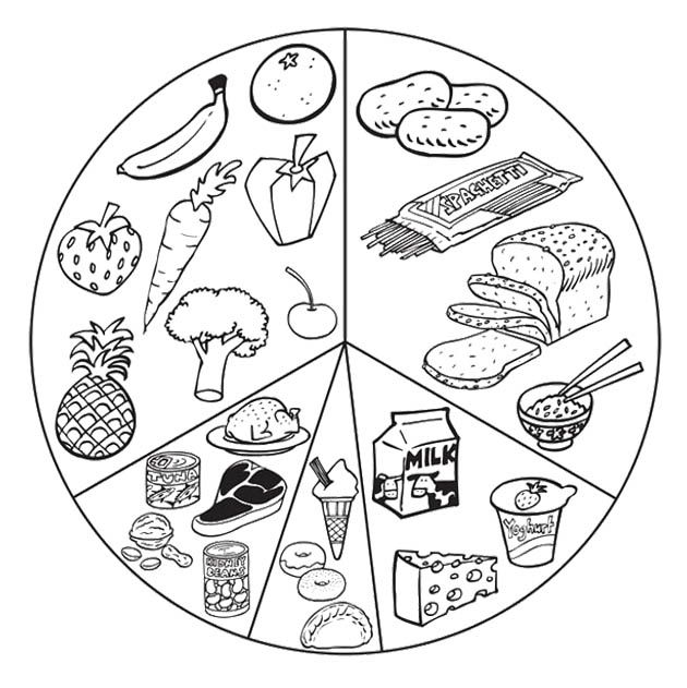Food Groups Printable Coloring Page