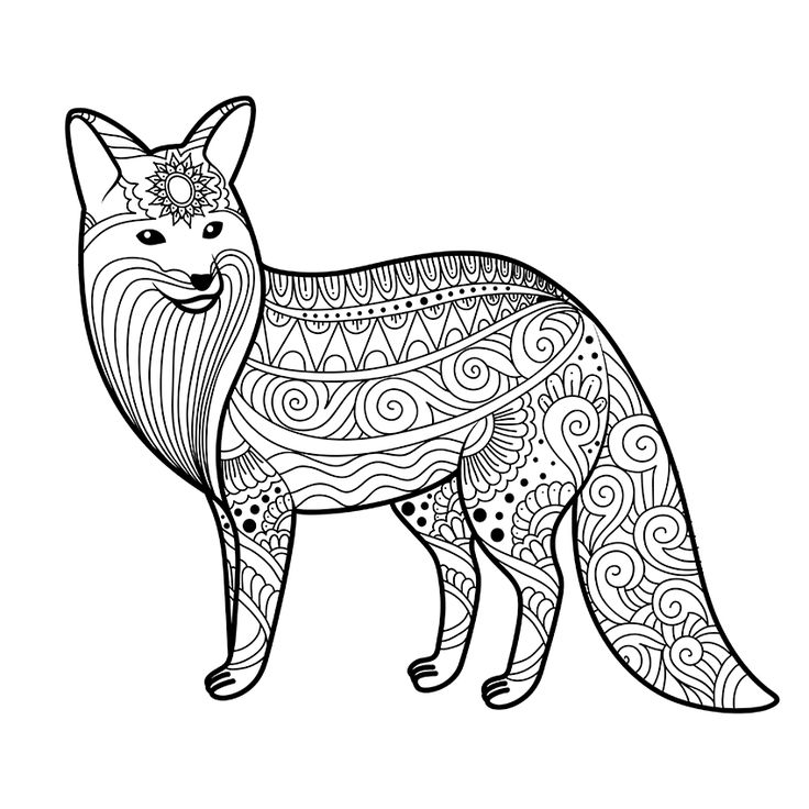 - Fox Coloring Pages – Coloring.rocks!