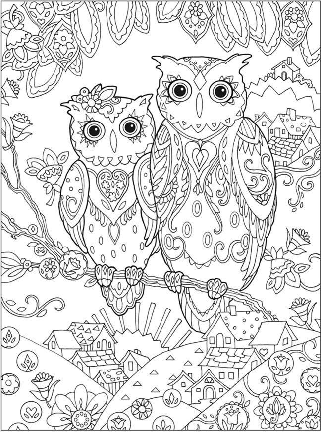 Free Owls Coloring Page