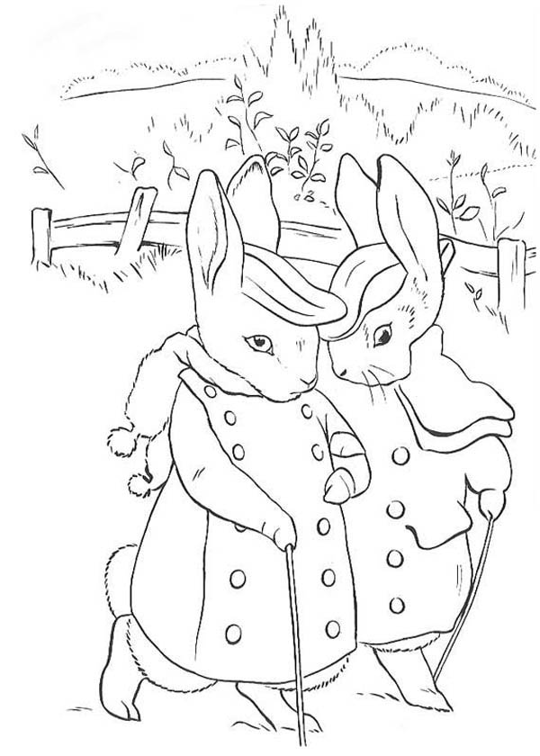 Free Peter Rabbit Coloring Pages