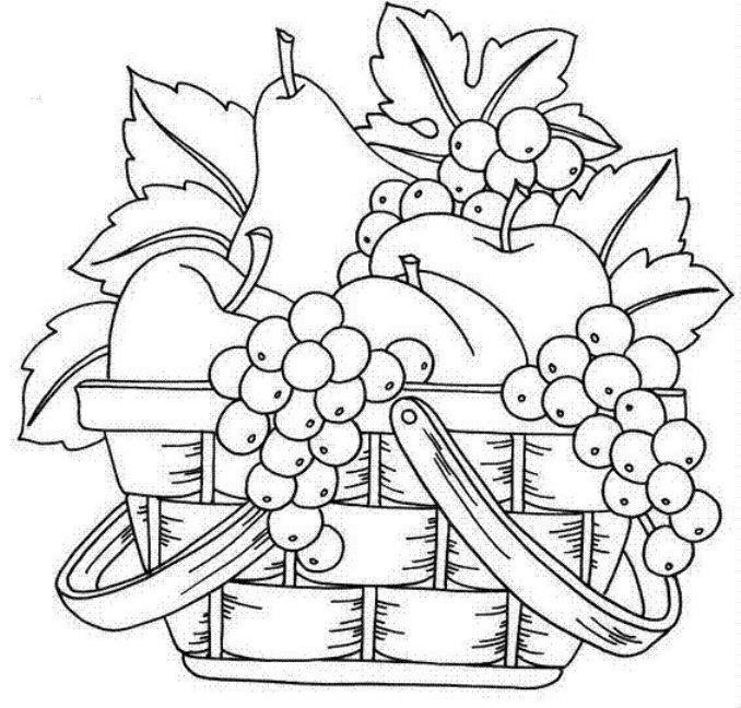 colorbook fruit basket | Fruits coloring pages, Fruits coloring ... | 648x678