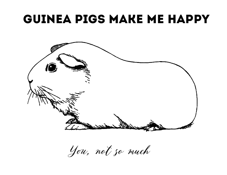 Guinea pig coloring pages | Free Coloring Pages | 612x792