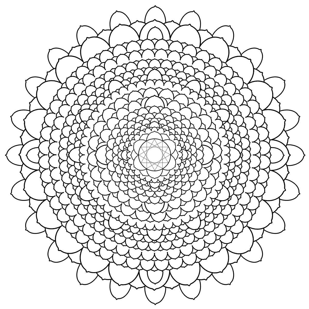 Geometric Flower Petal Mandala Coloring Pages