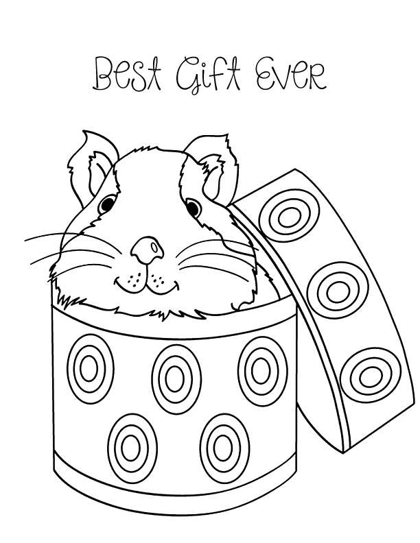 Guinea Pig Best Gift Coloring Page Coloring Rocks