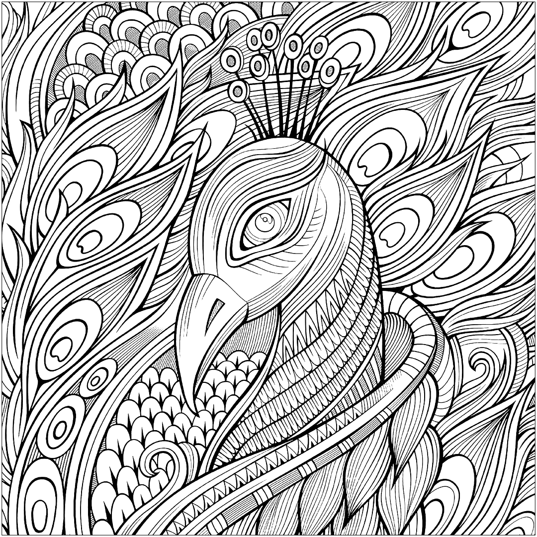 Hard Peacock Coloring Page