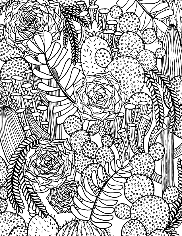 Hard Succulent Coloring Pages