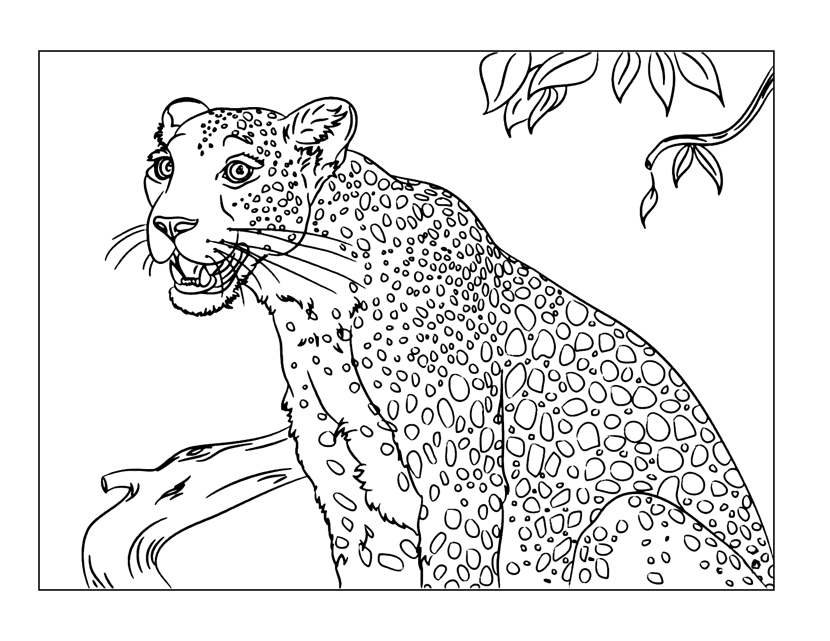 Leopard In Jungle Coloring Pages