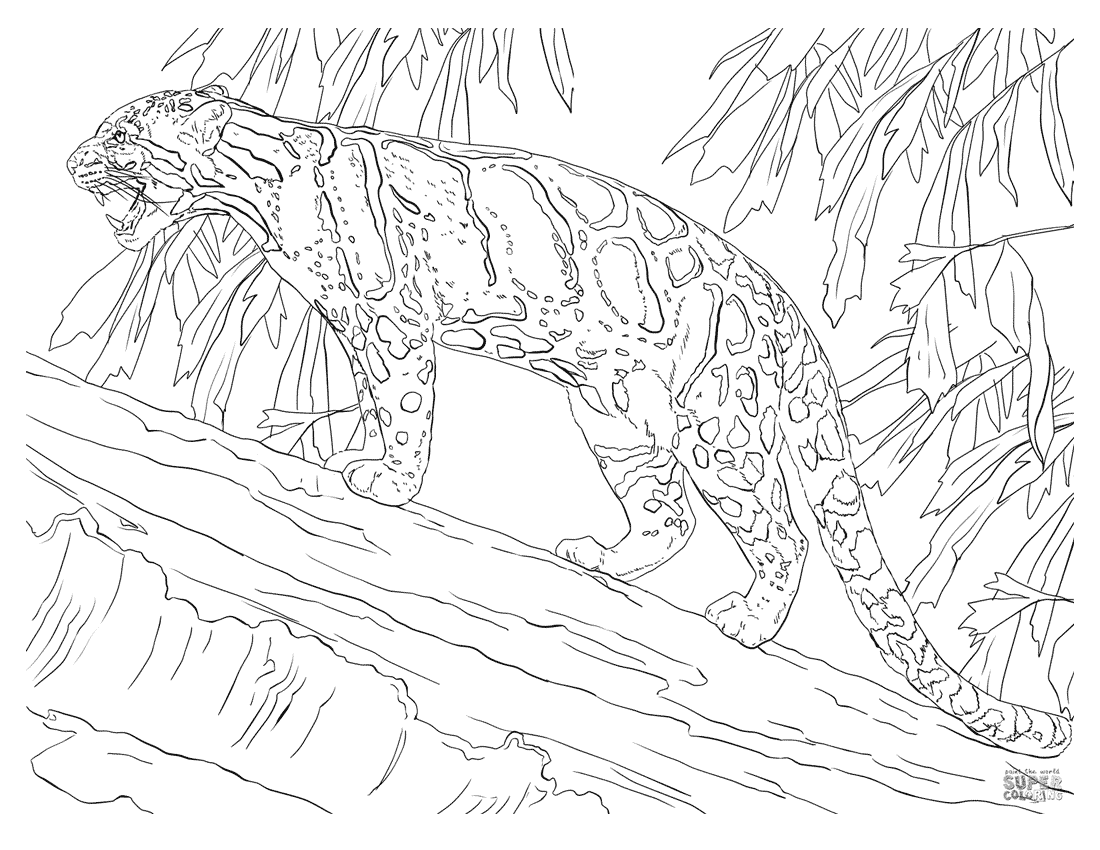 Leopard In Tree Coloring Page