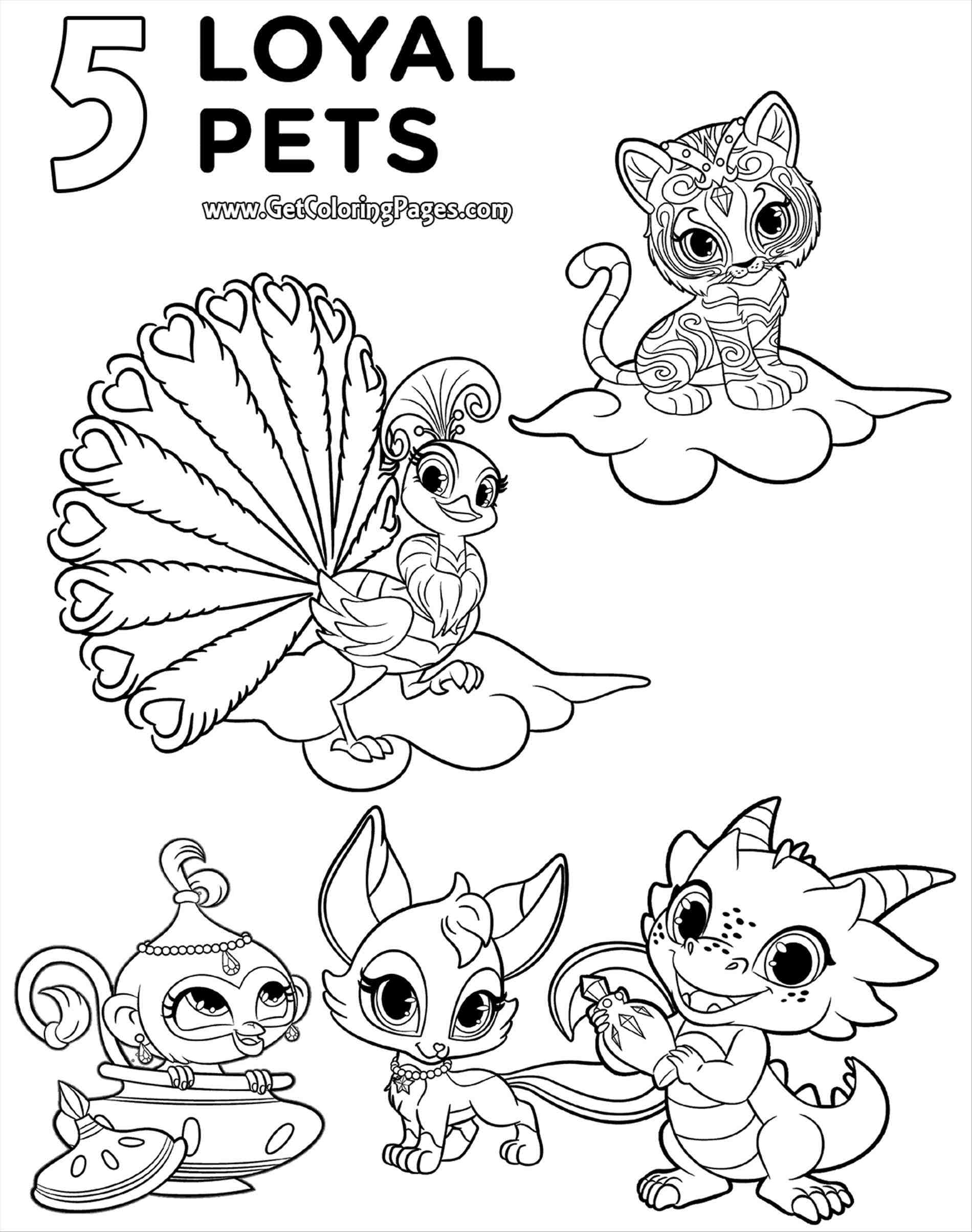 Loyal Pets Shimmer and Shine Coloring Pages
