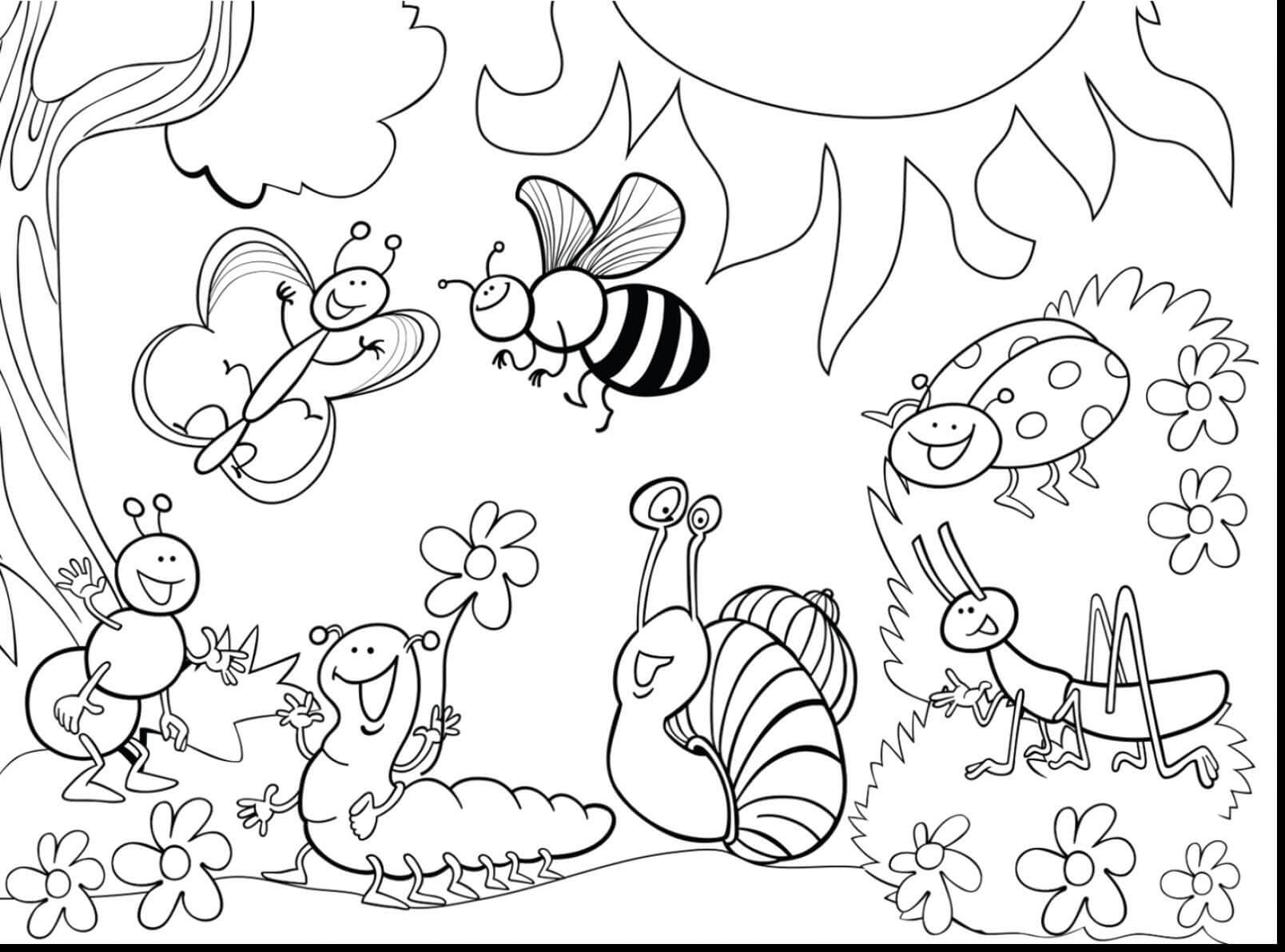 HoneyBee – Insect Coloring Pages – coloring.rocks!