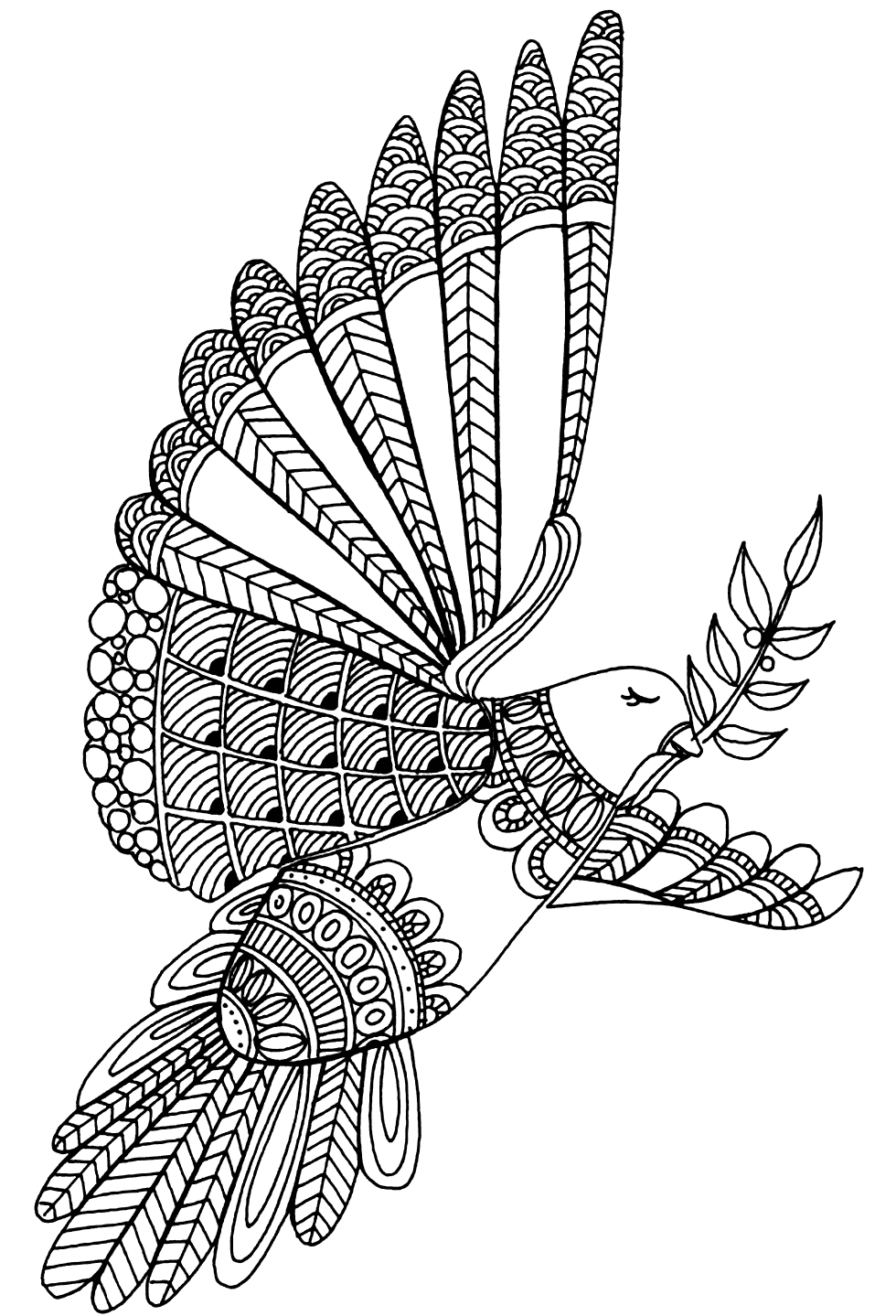 Peaceful Dove Coloring Pages for Adults
