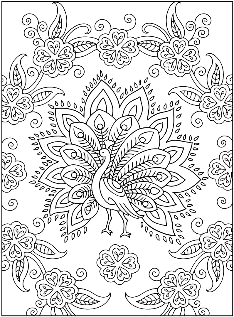 Peacock and Pattern Coloring Page