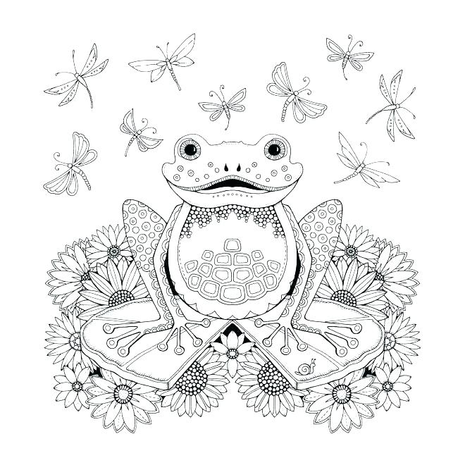 Frog Coloring Pages – coloring.rocks!