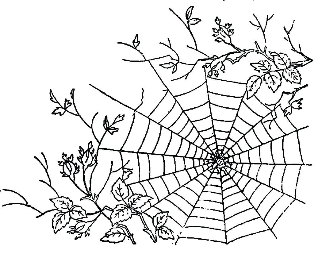 Pretty Spiderweb Coloring Page Rocks