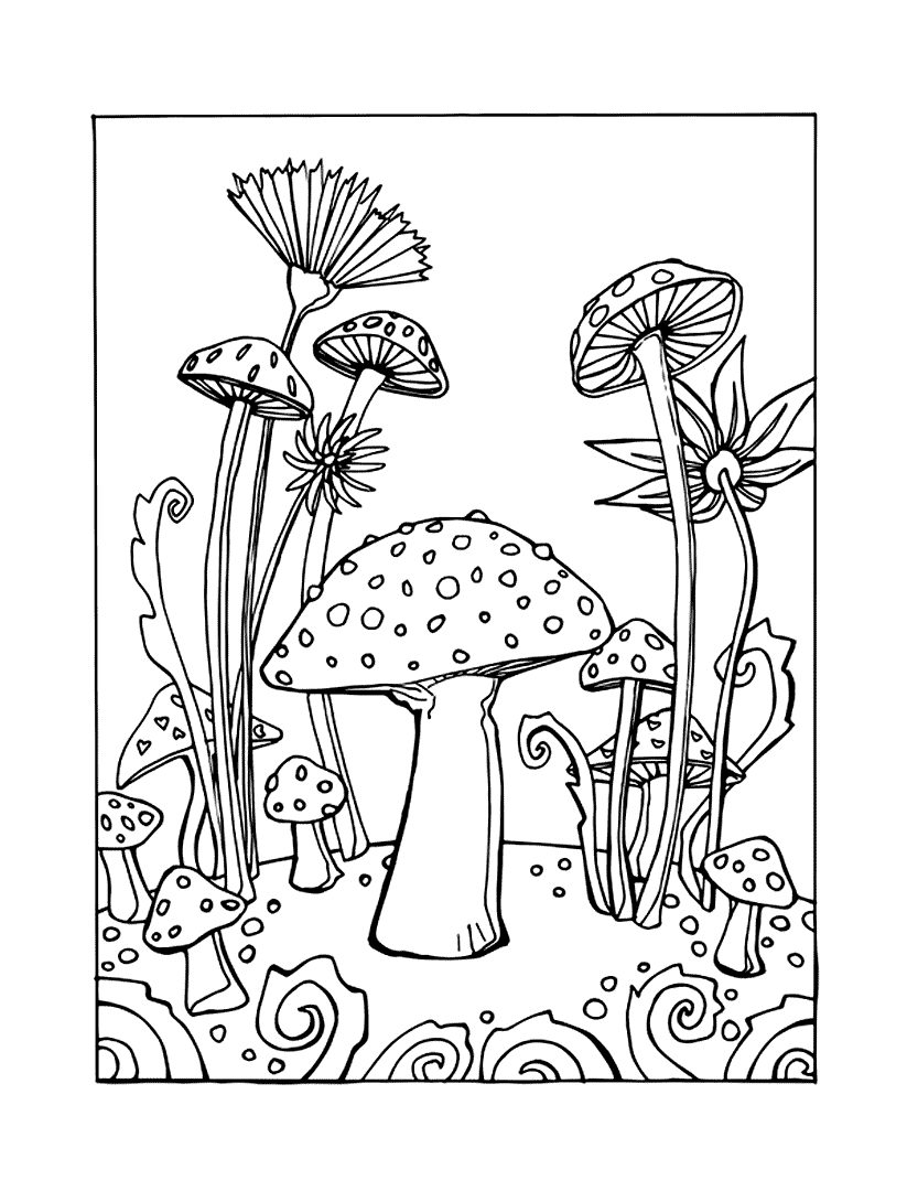 Mushroom Coloring Pages To Print for Kids | 1080x823
